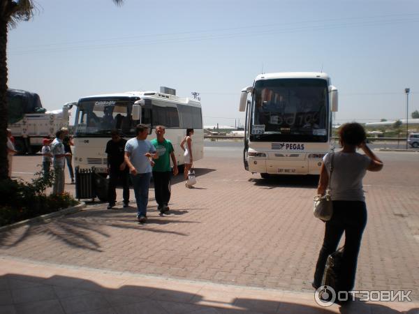 Гиды пегас туристик в тунисе фото оперативным данным