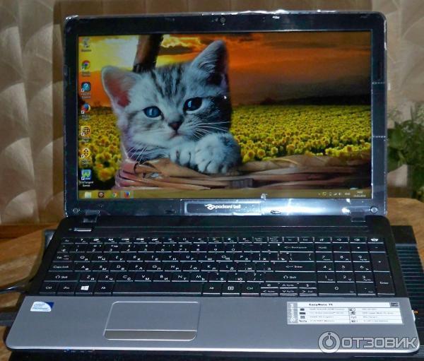 Ноутбук Packard Bell EASYNOTE TE 11 HC-20204 G 50 Mnks (NX.C1FER.038) фото