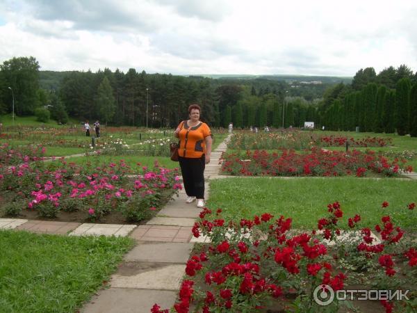 кисловодск долина роз фото