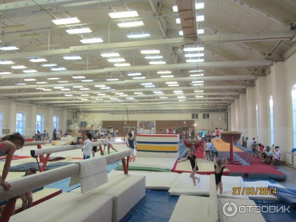 Спортивные клубы москвы спортивная гимнастика ночные развлечения в клубах видео