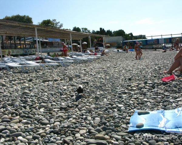 пломбу пляж огонек адлер фото бюджетная