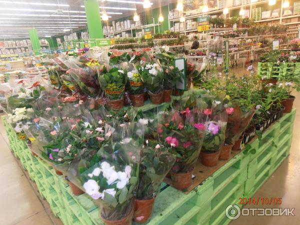 Свадебные букеты, цветы в магазине ашана отзывы
