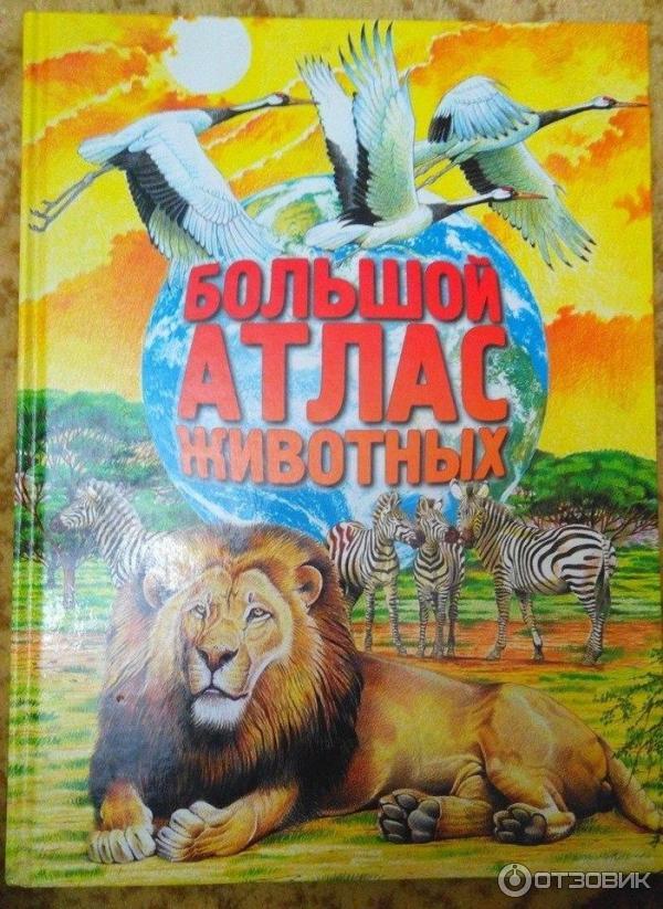 Большой атлас животных картинки