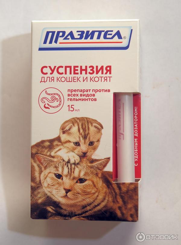 суспензия от паразитов для кошки