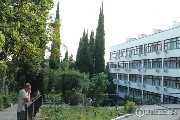 ассортименте санаторий смена лазаревское официальный сайт фото часть творчества
