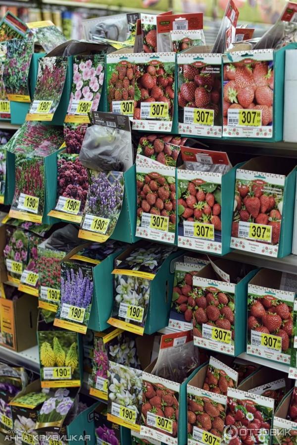 Овощей колбасы, цветы в магазине ашана отзывы