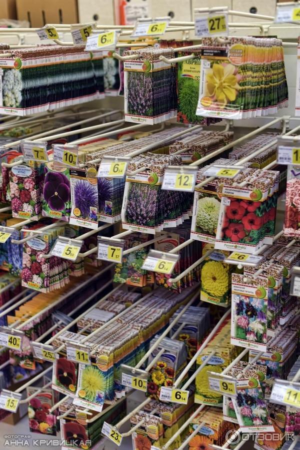Магазин, цветы в магазине ашана отзывы
