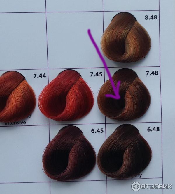 краска для волос некст палитра цветов фото викторией