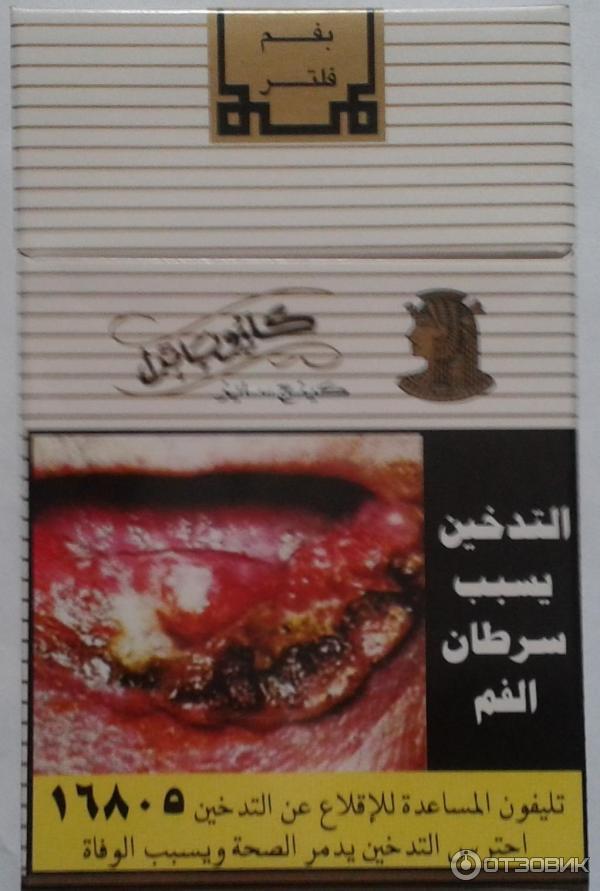Купить в египте сигареты купить электронную сигарету на картомайзерах