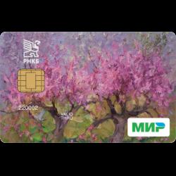 можно взять кредит в рнкб онлайн банк сбербанка скачать бесплатно приложение