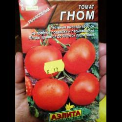 томат гном фото отзывы