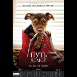 отзывы о фильм путь домой 2019