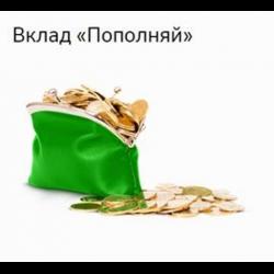 Москва пенсионный вклад пополняй один пенсионный балл в 2015