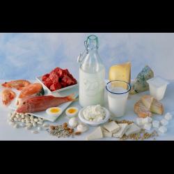 камни в желчном пузыре диета правильное питание пдф